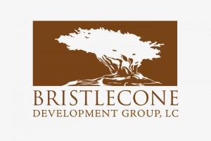 logo-11---bristleHZ