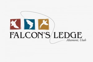 logo-6---falconsHZ